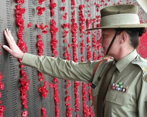 poppies on wall for remembrance